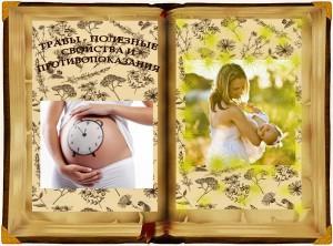 книга трав http://elena-dubrovina.ru/