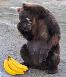 мишка_медведь_бананы_ненужная помощь_ рассказ Елены Дубровиной